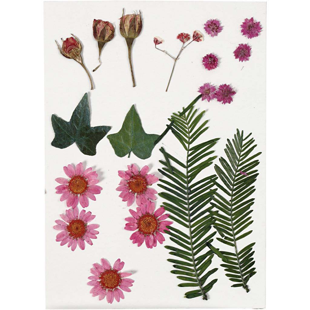Lisované sušené kvety ružový mix 19 ks