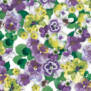 Servítky PANSY ALL OVER purple
